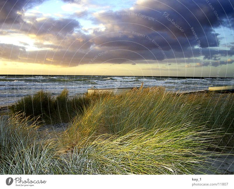Autumn at Hiddensee Ocean Beach Waves Sunset Water Baltic Sea Evening sea