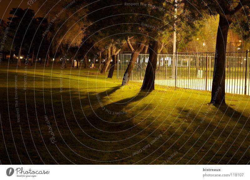 Tree Playing Lawn Fence Basketball Dubai Floodlight Sporting grounds