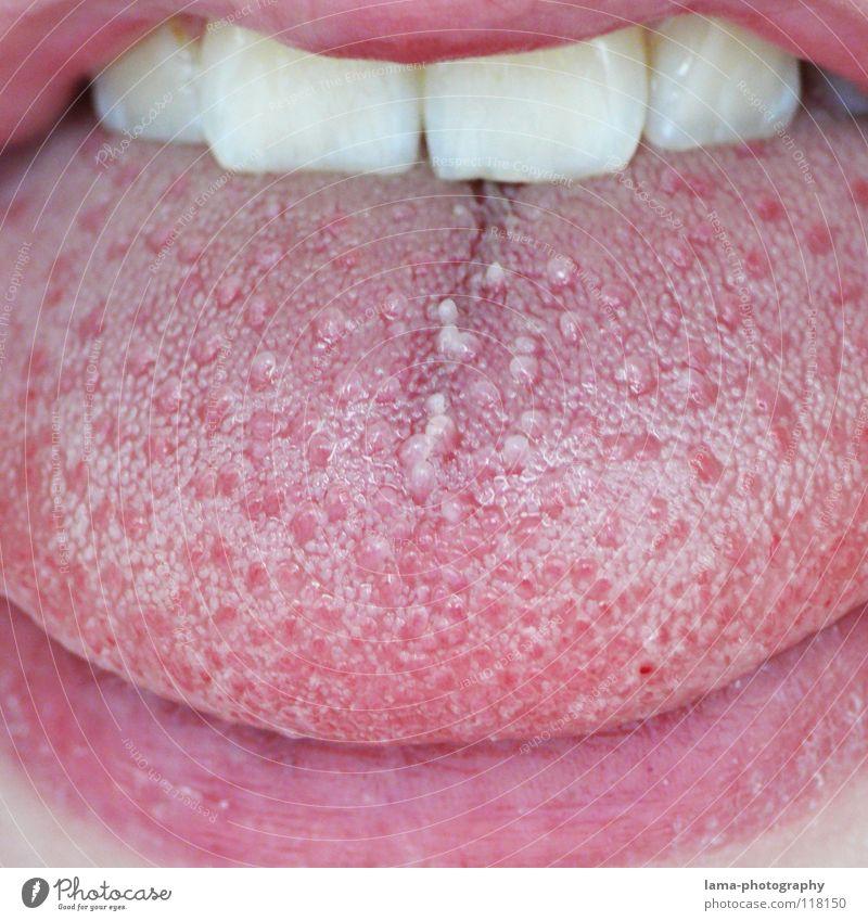 Doktorspielchen for Beard Hater Lips Pink Red Facial hair Sense of taste Nutrition Senses Mucous membrane Dry Damp Wet Mucus To talk Bacterium Dentist