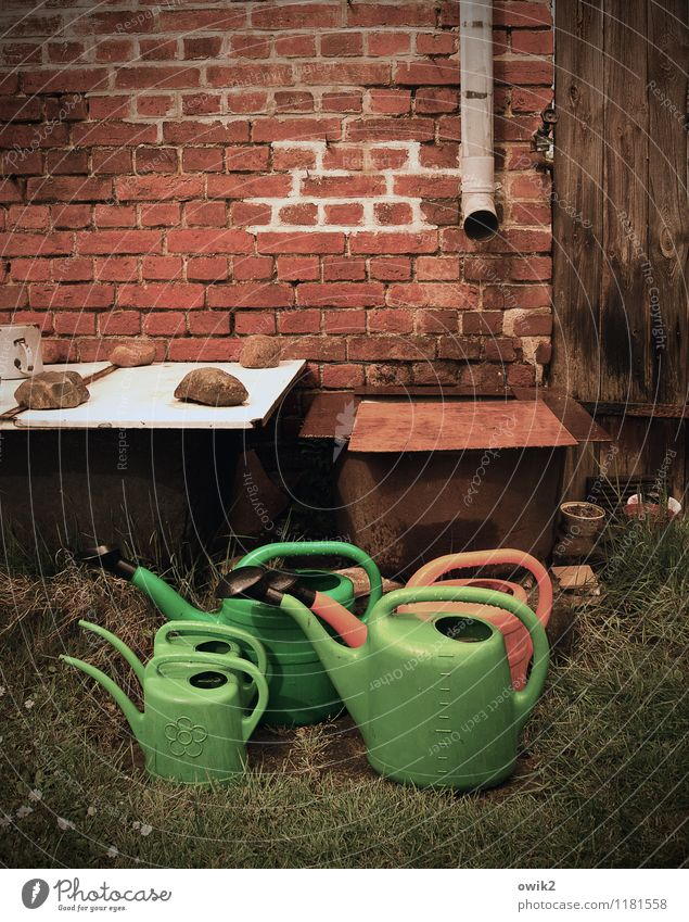 family trip Garden Wall (barrier) Wall (building) Brick wall Stand Wait Many Watering can Family & Relations Family outing Eaves Iron-pipe Colour photo