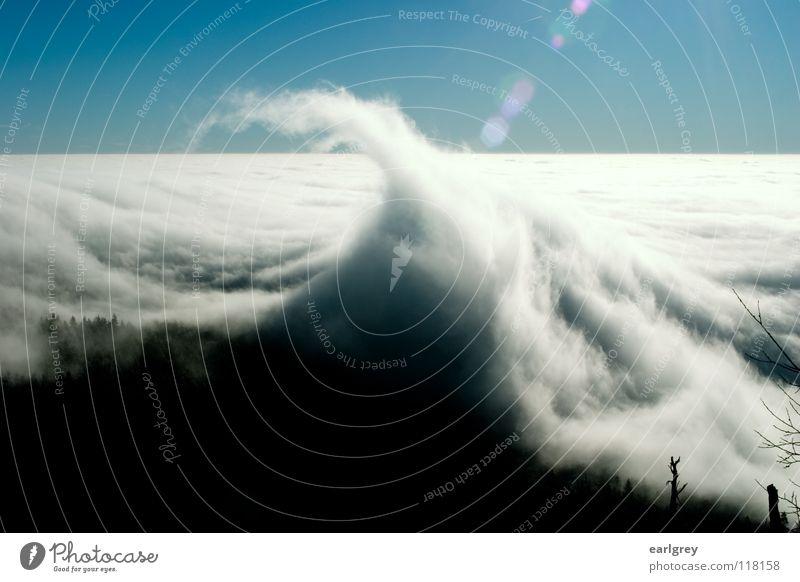 Cloud waves I Surf Waves Point Clouds Flow Enchanting Natural phenomenon Horizon Back-light Patch of light Exterior shot Enchanted wood Azure blue Sky