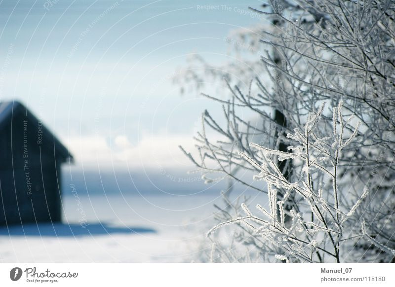 COLD VEIL Colour photo Exterior shot Deserted Sunlight Sunbeam Shallow depth of field Vacation & Travel Tourism Winter Snow Mountain