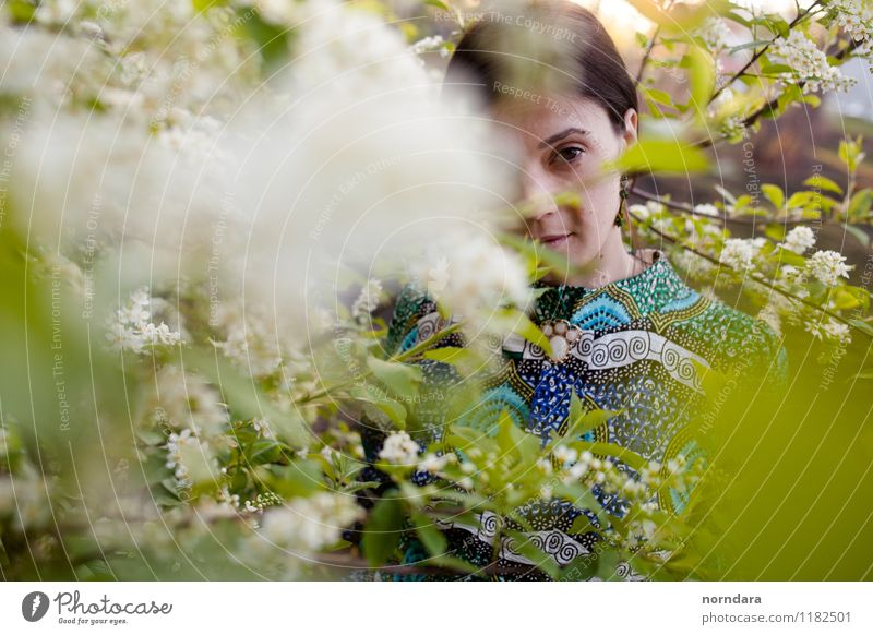 spring portrait Woman Adults Youth (Young adults) Spring Plant Tree Flower Leaf Blossom Foliage plant Wild plant Blossoming Spring fever Spring flower