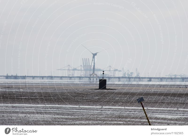 Another Day In Grey Tourism Summer Ocean Work and employment Industry Logistics Technology Energy industry Wind energy plant Environment Landscape Water Coast