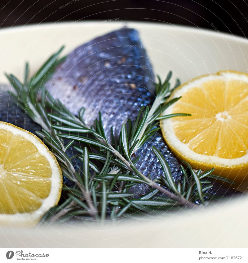 FreshFish Herbs and spices Lemon Nutrition Bowl Authentic Delicious To enjoy Rosemary Raw BBQ season Colour photo Deserted Copy Space top Copy Space bottom