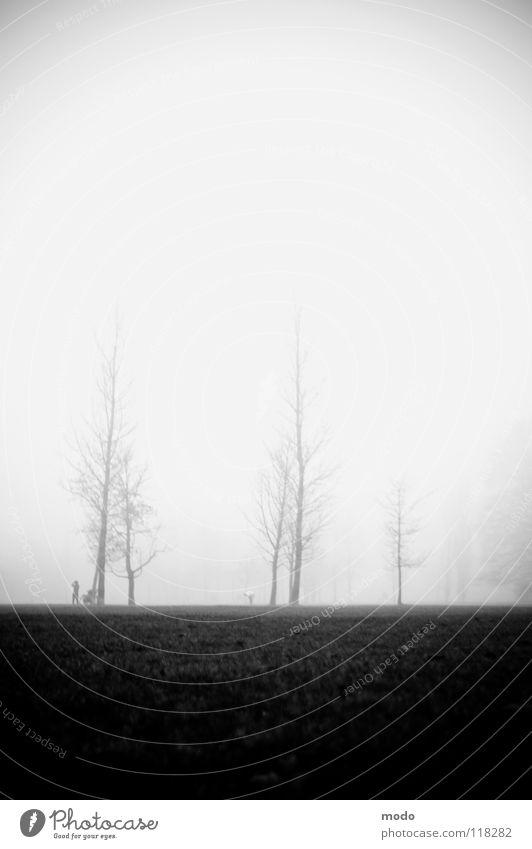 Human being Tree Winter Clouds Meadow Autumn Fog Walking Tall Grief Lawn The Englischer Garten