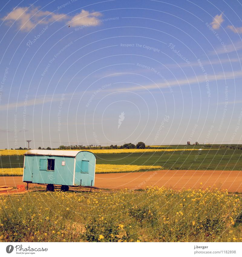Make blue Construction site Nature Landscape Plant Sky Spring Weather Beautiful weather Field Blue Brown Yellow Green building shack Site trailer Canola field