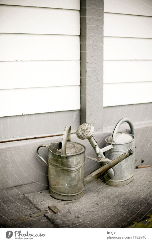Old love doesn't rust Lifestyle Living or residing Garden Gardening Watering can zinc Metal Simple Together Gray Moody Senior citizen Idyll Dented Colour photo