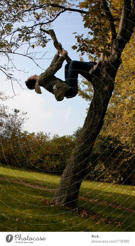 Climbing tree no. 4. Tree Jump Autumn Yellow Fellow Meadow Hold Situation Action Leaf Tree bark Moody Footwear Wood flour Sky Green Crazy Tripod Life Man Deep