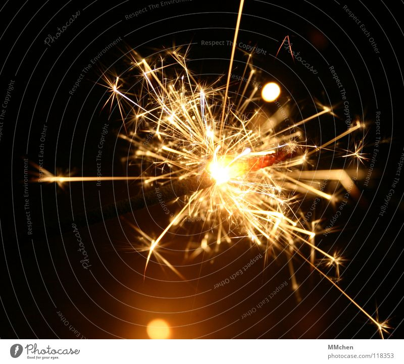 woodpecker New Year's Eve Christmas & Advent Welcome Sparkler Candle Light Star (Symbol) Flash Glittering Dazzling Glow Burn Rustling Ignite Spray Illuminate