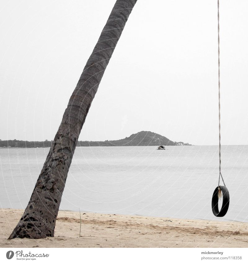 Tree Ocean Beach Vacation & Travel House (Residential Structure) Loneliness Playing Rope Island Asia String Palm tree Thailand Rubber
