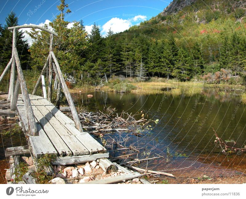 Nature Lake Bridge USA Jordan Pond