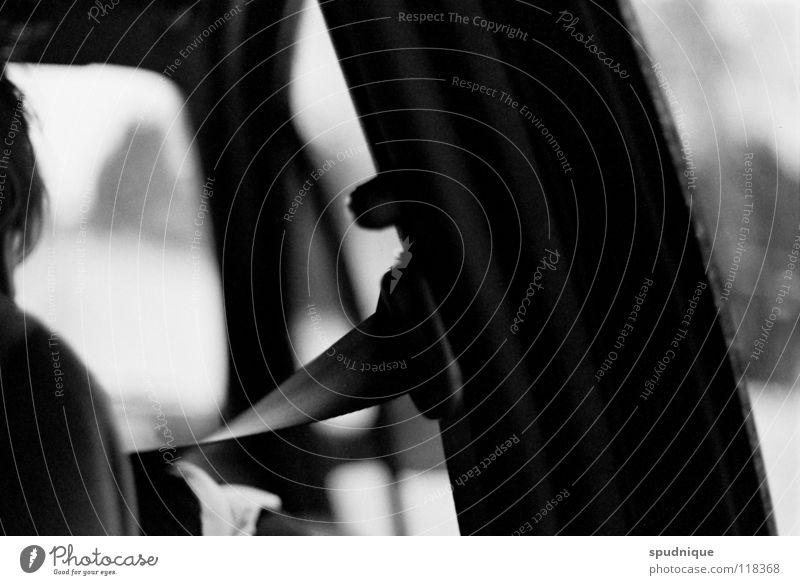 White Black Car Room Transport Safety Motor vehicle Driving Accident Belt Jail sentence Foresight Front seat passenger