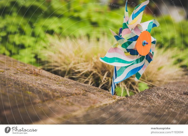 windmill Playing Garden Education Kindergarten Toys Pinwheel Multicoloured Statue Rotate Rotation Blow Infancy Colour photo Exterior shot Deserted