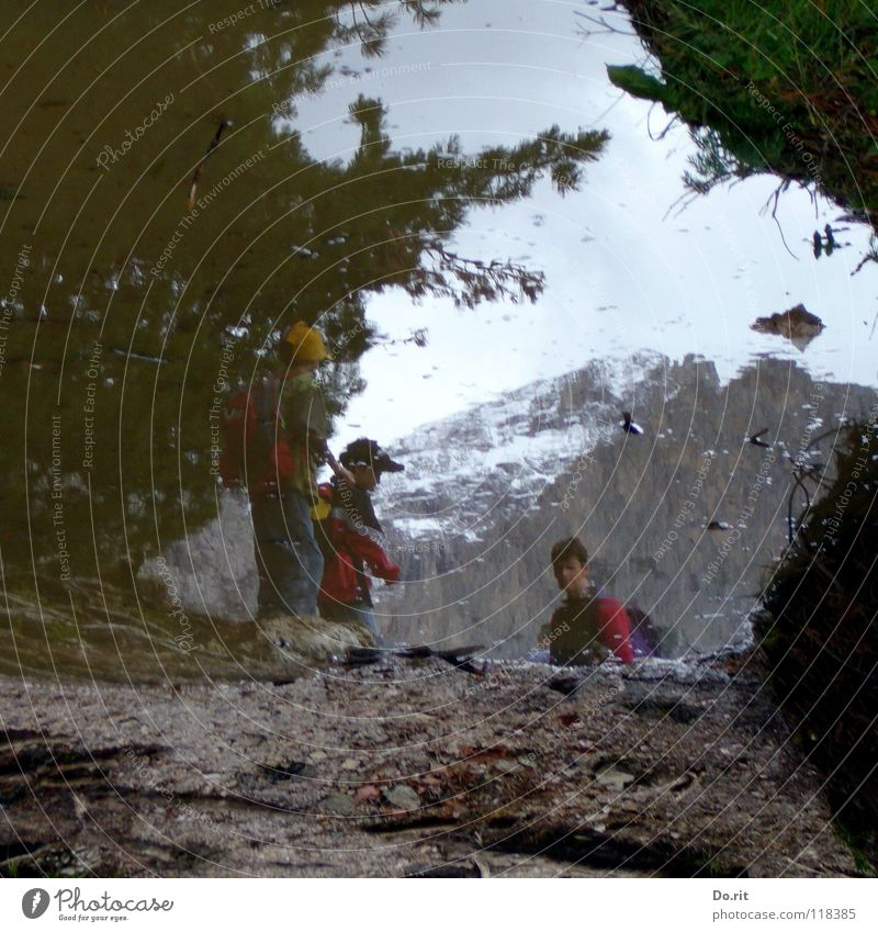 plunged into the puddle Puddle Mirror Grass Gray Mud Dolomites Peak Child Mirror image Clouds Dark Coniferous trees Italy Tunnel Navigation Mountain Rock Sky