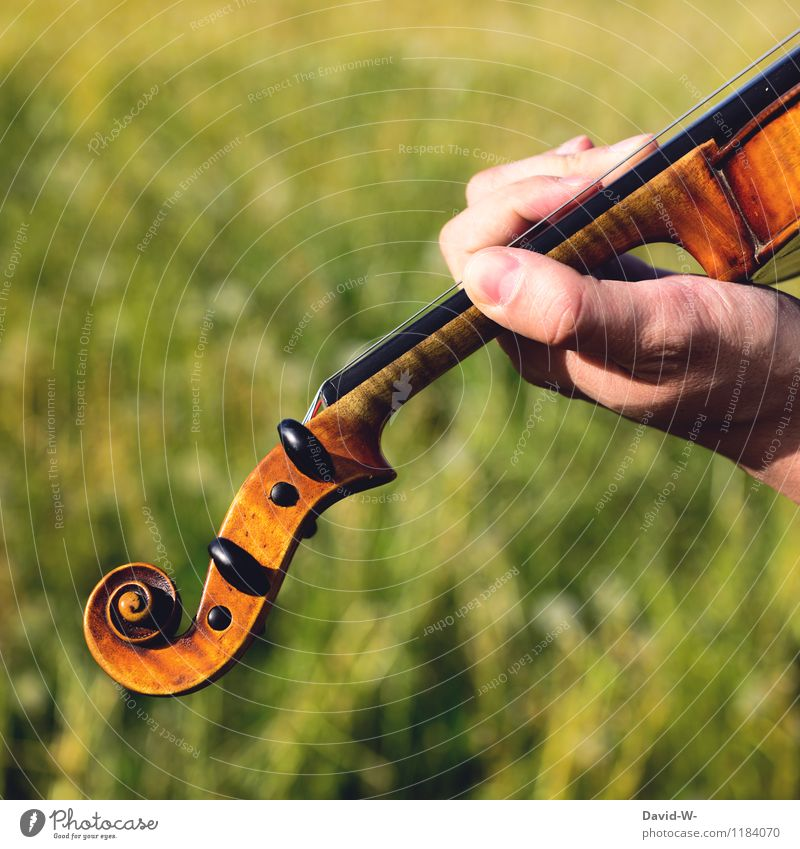 Human being Youth (Young adults) Man Summer Relaxation Young man Calm Adults Life Emotions Playing Masculine Leisure and hobbies Elegant Music Fingers