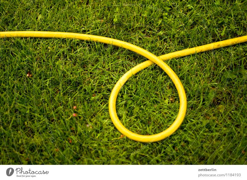 hose Spring Garden Garden plot Grass Lawn Grass surface Meadow Hose Garden hose Irrigation Plant Lawn sprinkler Cast Yellow Loop Spiral Whorl Circle Round Curve