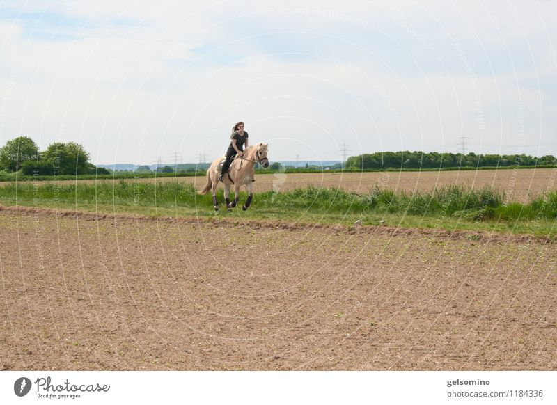hop hop hop gallop Ride Equestrian sports Young woman Youth (Young adults) 1 Human being Beautiful weather Field Horse Animal Running Movement Sports
