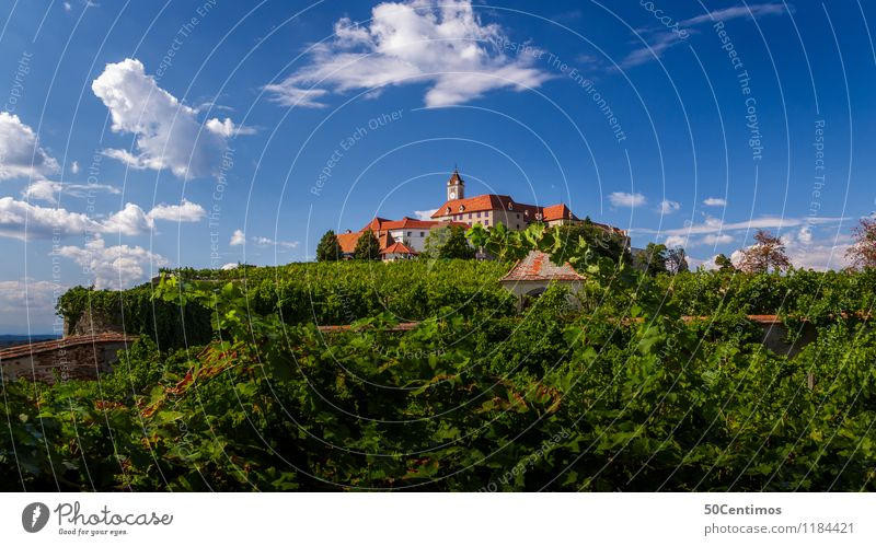 The Riegersburg Castle Vacation & Travel Tourism Trip Adventure Far-off places Sightseeing City trip Summer Summer vacation Sun Hiking Nature Landscape Sky