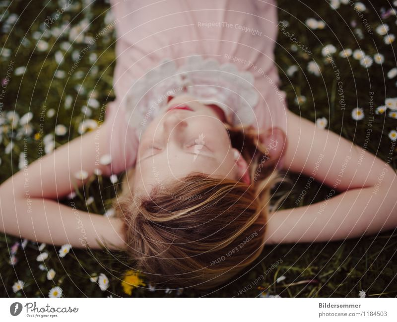 Mia & Daisies II Contentment Relaxation Calm Summer Summer vacation Human being Feminine Child Girl Infancy 1 3 - 8 years 8 - 13 years Nature Flower Grass