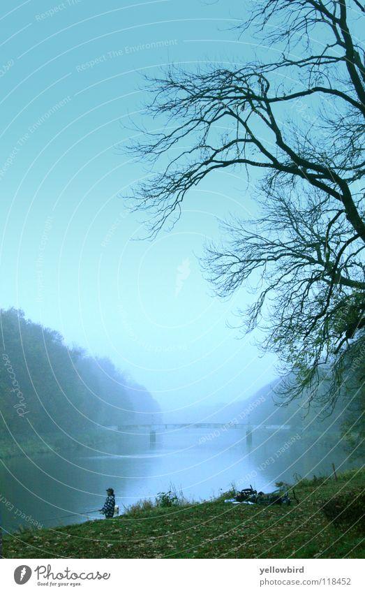 Nature Autumn Lake Fog Bridge River Leipzig Angler Saxony