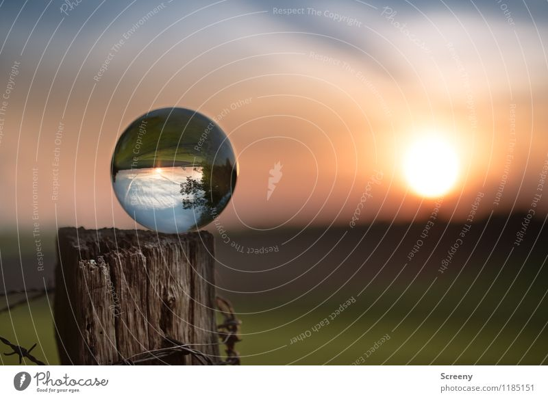 Worlds #1 Nature Landscape Plant Sky Sun Sunrise Sunset Spring Summer Beautiful weather Meadow Field Glass ball Crystal ball Wood Illuminate Round Serene Calm
