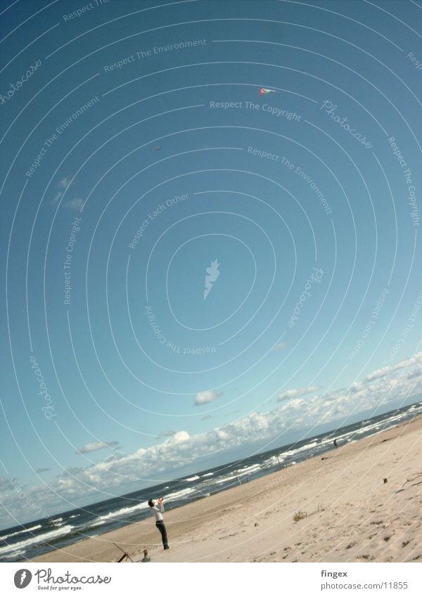 hang-gliding Woman Ocean Beach Dragon Water Sand