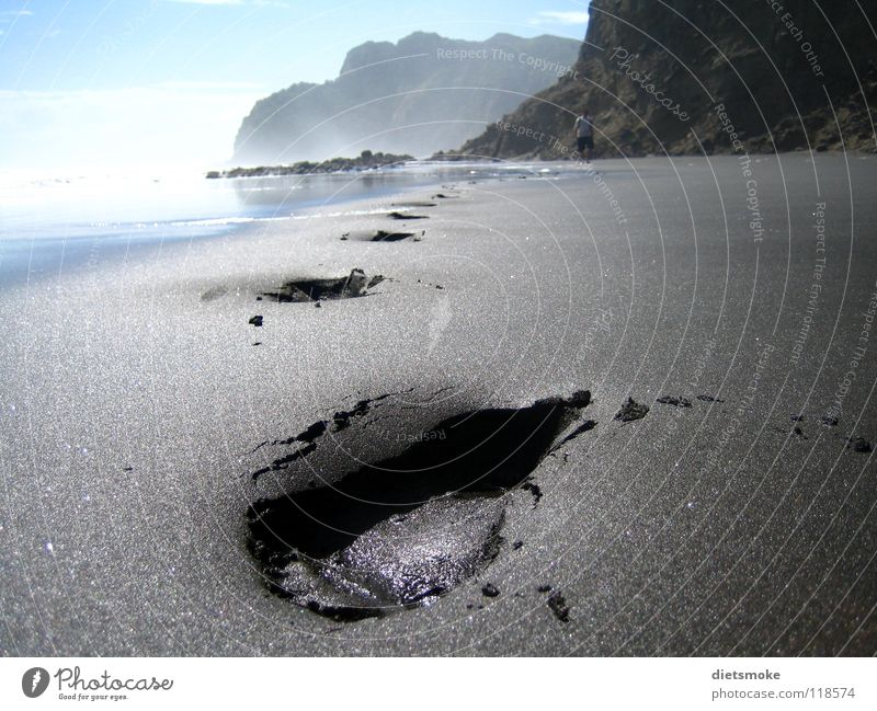 Ocean Beach Sand Coast Earth Tracks Footprint New Zealand