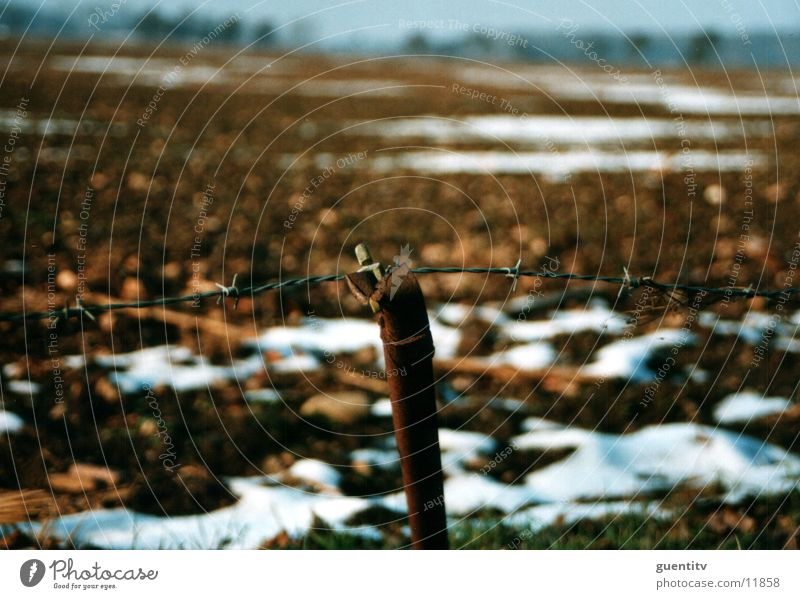 fence Fence Barbed wire Winter Autumn Landscape Rust Old
