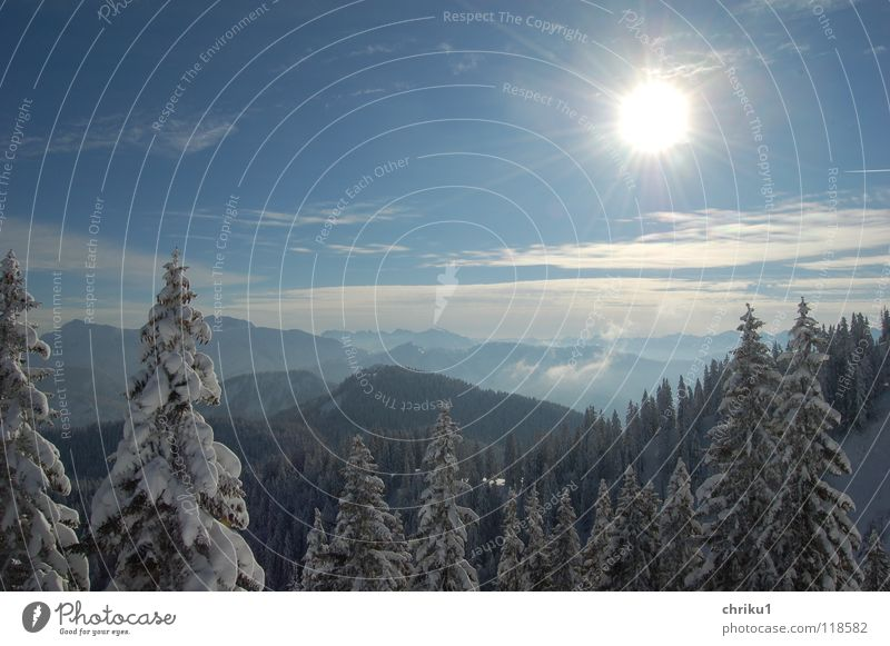 Sky Blue Tree Sun Winter Cold Snow Mountain Leisure and hobbies Alps Vantage point Winter mood Ski tour