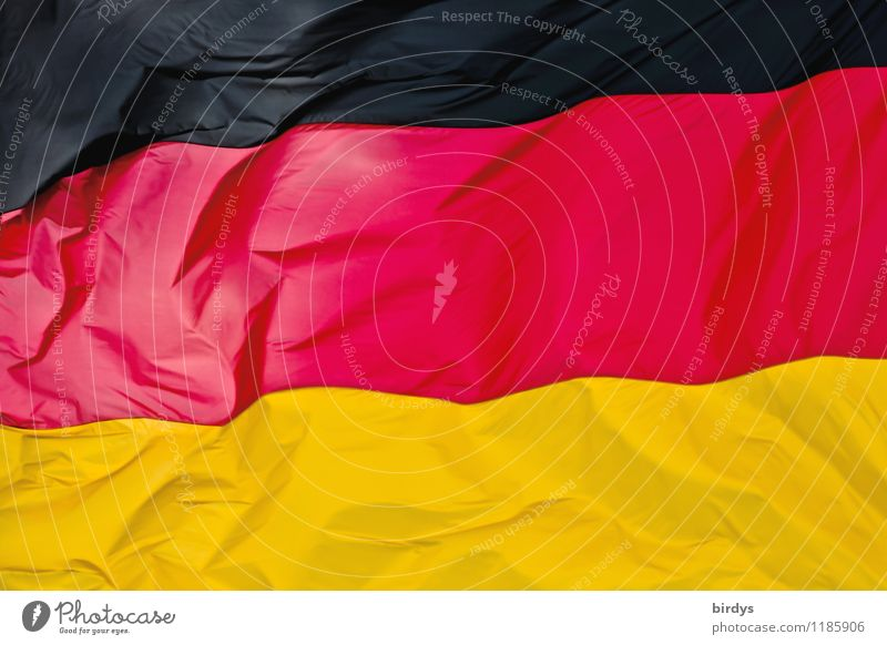 Rich in contrast Germany Sign Stripe Flag Esthetic Elegant Positive Gold Red Black Colour Identity Politics and state German Flag full-frame image Folds