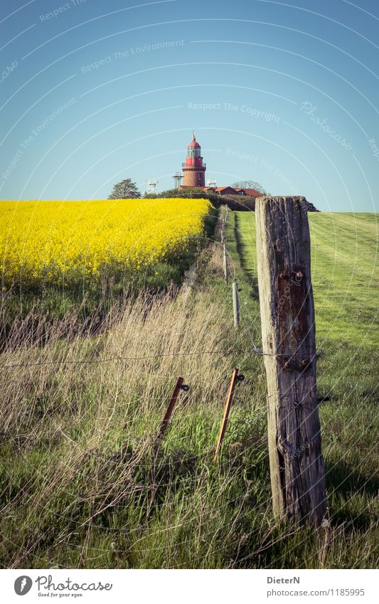 At the edge of the field Landscape Spring Beautiful weather Plant Grass Agricultural crop Field Tower Lighthouse Blue Yellow Green Canola Canola field