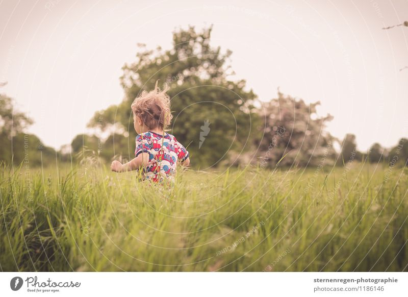 Wops in the grass Androgynous Child Toddler Boy (child) Infancy Life Hair and hairstyles 1 - 3 years 3 - 8 years Nature Curl Running Romp Curiosity Wild Freedom