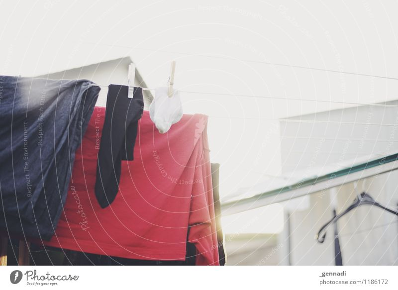 unadulterated Clothing T-shirt Laundry Washing Clothesline Clean Red Purity Bright Household Colour photo Deserted Day Shallow depth of field