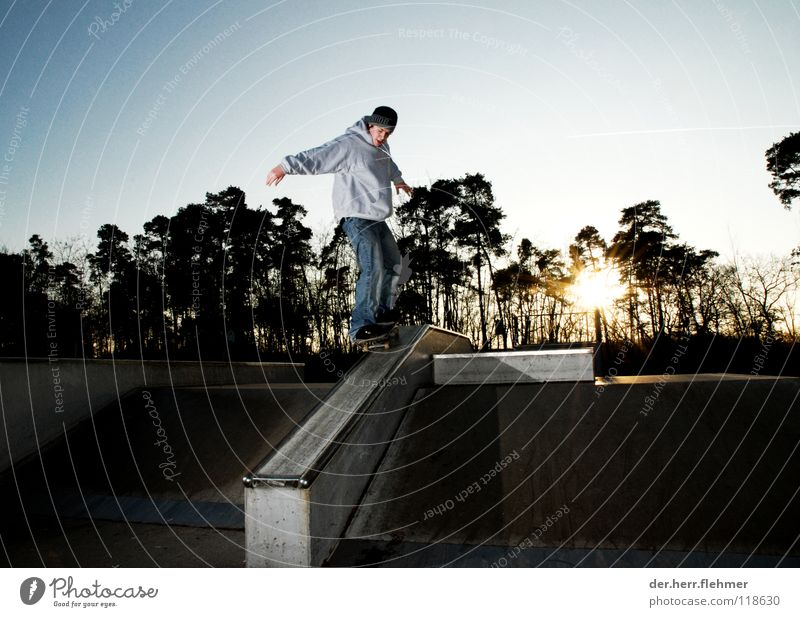 50/50 Skateboarding Sweater Sports ground Back-light Grind Contentment Tree Park Broken Playing funbox Sun Shadow Individual