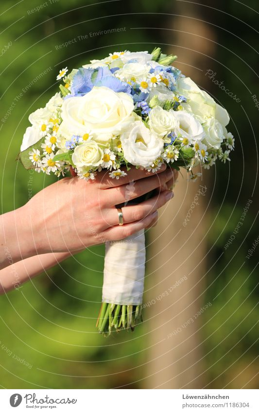Youth (Young adults) Blue Beautiful Green White Young woman Hand 18 - 30 years Adults Elegant Gold Esthetic Fingers Wedding To hold on Bouquet