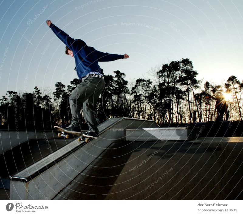5-0 Skateboarding Sweater Sports ground Back-light Grind Contentment Tree Park Broken Speyer Playing funbox Sun Shadow Individual