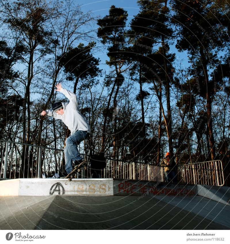 nosegrind Skateboarding Sweater Sports ground Back-light Grind Contentment Tree Park Broken Playing funbox Shadow Individual