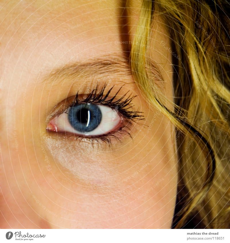 Woman Blue Beautiful Face Eyes Feminine Emotions Hair and hairstyles Open Large Friendliness Near Trust Curl Smoothness Eyelash