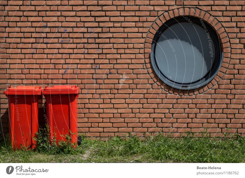 Green Red House (Residential Structure) Eyes Wall (building) Grass Wall (barrier) Gray Train window Exceptional Stone Brown Couple Together Facade Stand