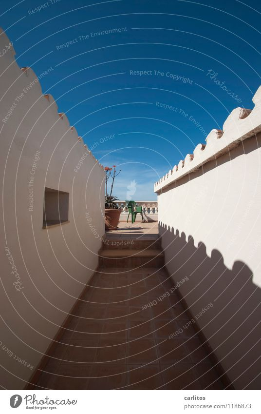 Indian photo Sky Summer Beautiful weather Warmth Wall (barrier) Wall (building) Terrace Roof Esthetic Blue Brown White Perspective Symmetry Far-off places