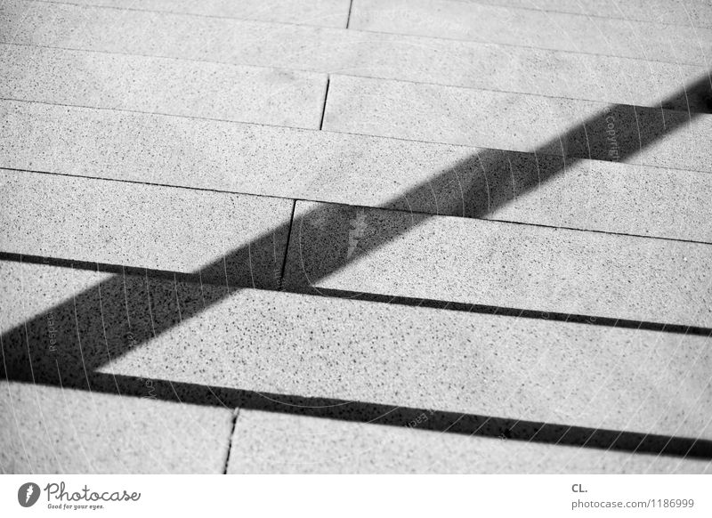 countermovement Beautiful weather Stairs Lanes & trails Line Downward Upward Stone Sharp-edged Growth Target Black & white photo Exterior shot Abstract Deserted