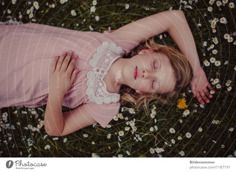 Mia & Daisies Human being Feminine Child Girl 1 8 - 13 years Infancy Nature Flower Grass Garden Park Meadow Dress Blonde Relaxation To enjoy Sleep Dream Green