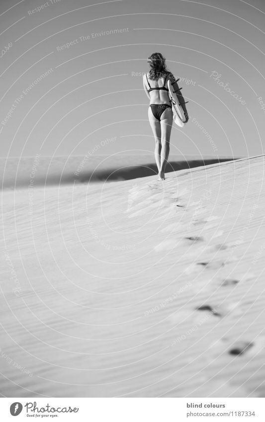 fleuve Art Esthetic Contentment Desert Tracks Barefoot Woman Surfing Walking Womens back Surfboard Summer vacation Summery To go for a walk Eroticism