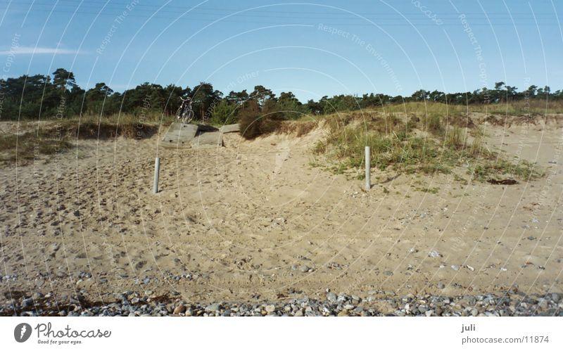 Beach Autumn Break Beach dune Baltic Sea