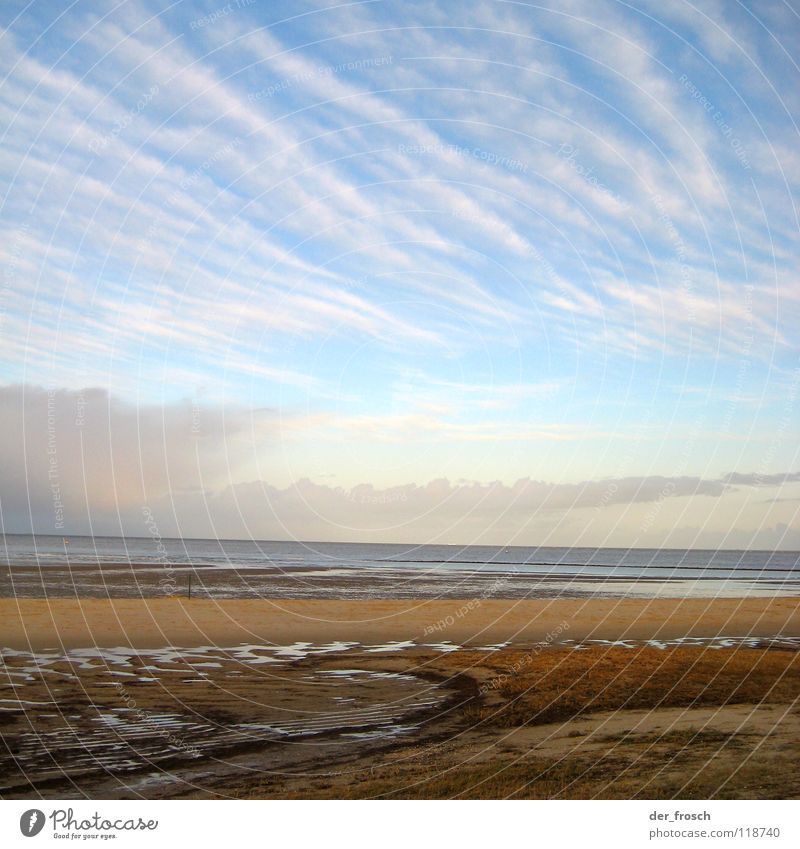 geniusbeach Ocean Beach Clouds Grass Green Sun Mud flats Slick Wilhlemshaven Winter Coast Sky North Sea Wind Blue Clarity Sand