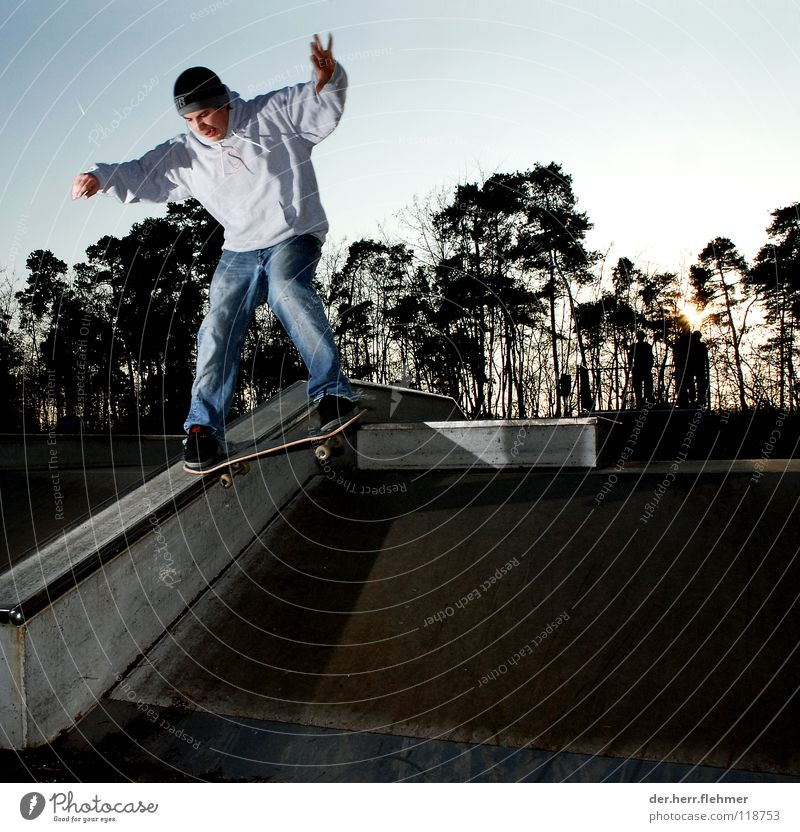 nosegrind Skateboarding Sports ground Tree Wood Concrete Sunset Style Playing funxbox couping Metal Shadow Crazy scurf