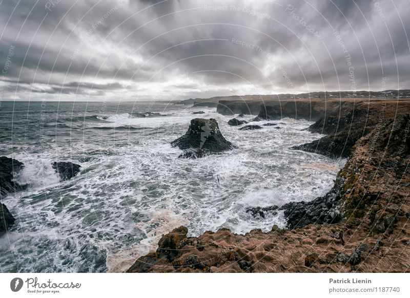 Wild Sea Wellness Life Well-being Contentment Senses Relaxation Vacation & Travel Tourism Trip Adventure Far-off places Environment Nature Landscape Elements