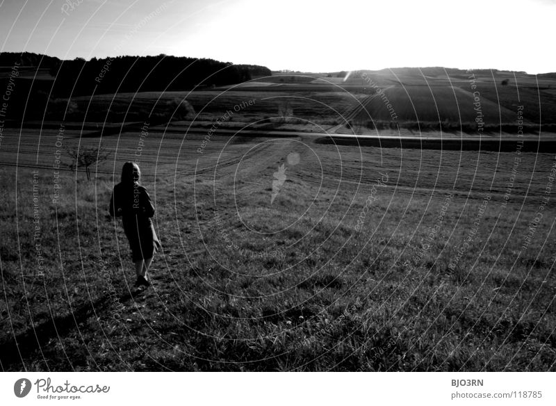 Time to think Wide angle Black White Back-light Far-off places Horizon Woman Think Hill Tree Meadow Autumn Plant Going Calm Light Patch of light