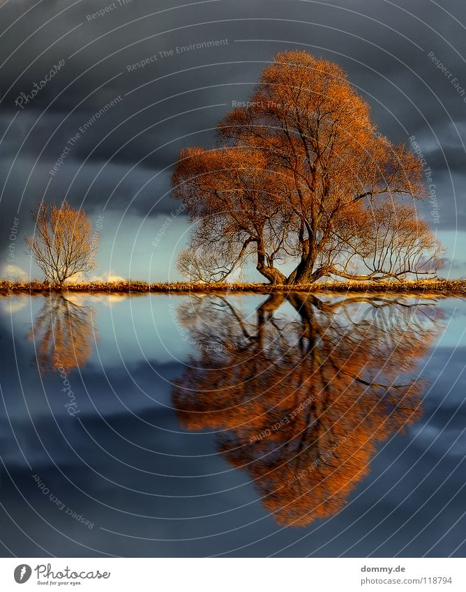 Nature Water Sky Tree Winter Clouds Autumn Movement Wood Lake Rain Weather River Bushes Branch Mirror